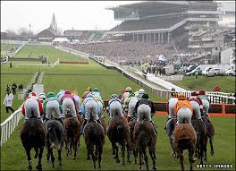 cheltfest
